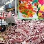 como são produzidos os alimentos